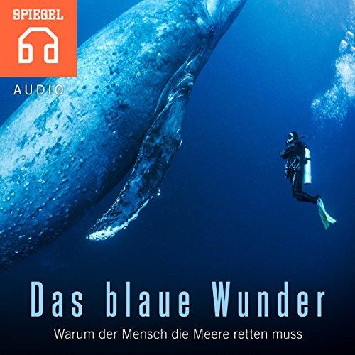 Das blaue Wunder: Warum der Mensch die Meere retten muss