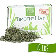 The Highest Quality - Premium Timothy Hay For Rabbits, Guinea Pigs, And Chinchillas By & For Small Animal Owners - We'Re Passionate About Our Pets, So We Hand-Select & Package In Small Batches As Only Pet-Lovers Would Do Delivered Fresh & Minimally H...