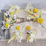 Tocado nupcial, boda súper hadas flores secas, accesorios para el cabello del vestido, joyería de estilo de maquillaje de belleza de hadas