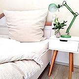 leinenlieb®: Leinen-Bettwäsche aus 100% Leinen (Bettwäsche-Set: Decke 135 x 200 cm und Kissen 80 x 80 cm), Stonewashed Leinenbettwäsche Natur beige, Bettbezug aus hochwertigem reinem Leinen