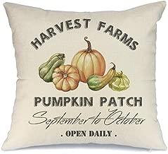 AENEY Fall Pillow Cover 18x18 inch Pumpkin Throw Pillow for Fall Decor Farmhouse Fall Decorations Decorative Pillow Cover