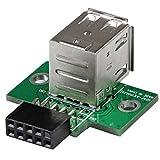 StarTech マザーボードピンヘッダー接続USB 2ポート増設変換アダプタ 2x USB A/ メス - IDC (10ピン)/ メス USBMBADAPT2