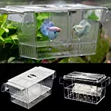 Cicony Tanques de cría de peces, acuario, trampa de cría de peces, caja de cría de peces, freír flotante de aislamiento (S/L tamaño) (L,transparente)