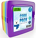 Healthy Packers Cool Pack, Slim Ice Pack for Lunch Box - Quick Freeze and Long-Lasting - Freezer Cold Packs for Cooler Bag and Lunch Boxes - Original Long-Lasting Formula (5-Pack)