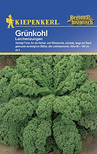 Kohlsamen - Grünkohl Lerchenzungen von Kiepenkerl