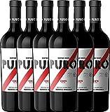 6er Paket - Puro Corte 2018 - Dieter Meier mit VINELLO.weinausgießer | trockener Rotwein | argentinischer Biowein aus Mendoza | 6 x 0,75 Liter