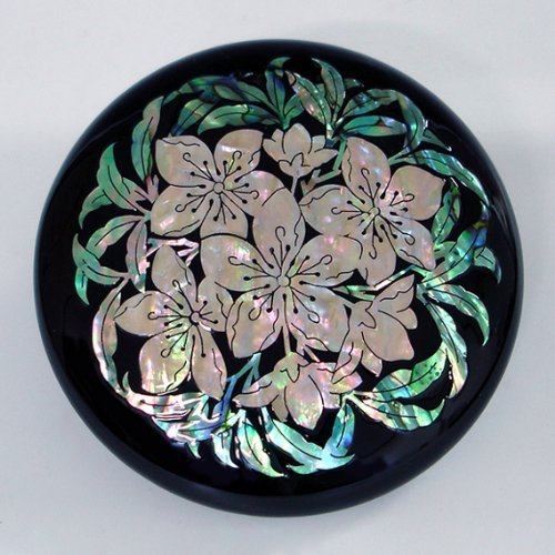 Mother of Pearl Black White Flower Makeup Compact Round Cosmetic Hand Mirror by Antique Alive