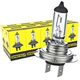 10x Brehma H7 Halogen Lampe Autolampe 12V 55W...
