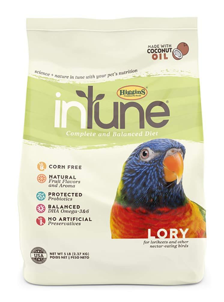 Higgins Intune Lory Food 5 Lb, Large