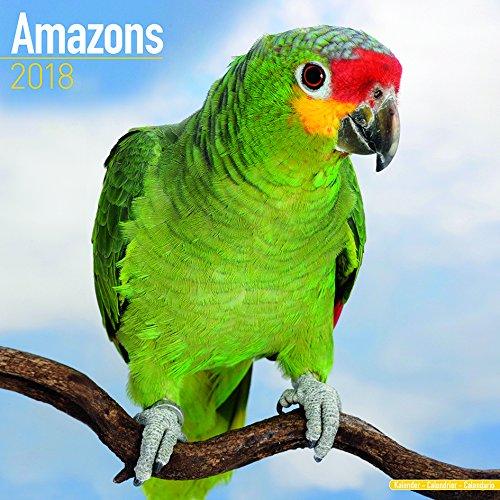Kalender 2018 Amazonenpapageien - Amazons mit kostenloser Meerschweinchen Weihnachtskarte