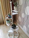 YYQIANG Indoor Fiore Stand Scaffale Scala a chiocciola pianta del Basamento della mensola Pot di Fiore Esterno del Giardino Soggiorno Balcone Esposizione e Decorazione, conservazione