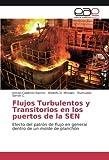 Calderón Ramos, I: Flujos Turbulentos y Transitorios en los