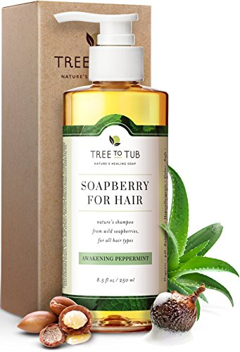 Shampoo for oily hair by tree to tub - pH 5.5 balanced peppermint shampoo. Gentle for all hair types, with organic argan oil, wild soapberries 8.5 oz
