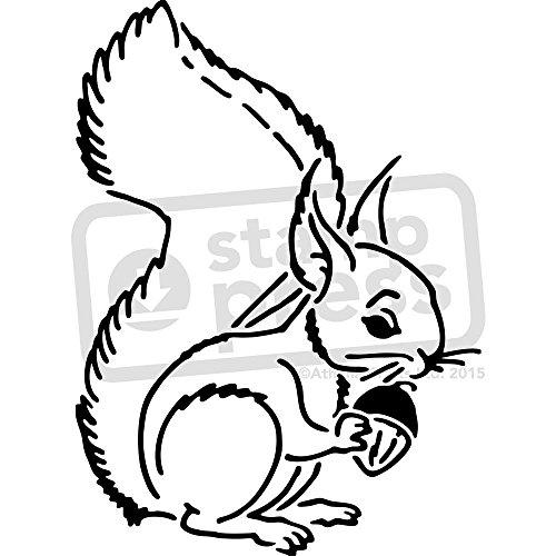 Stamp Press A5 'Eichhörnchen' Wandschablone / Vorlage (WS00014162)