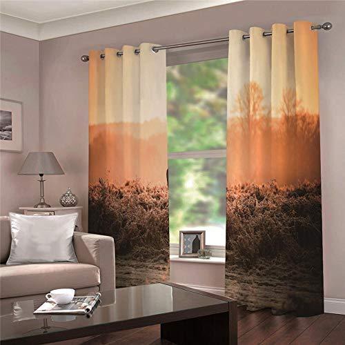 cortinas termicas exterior