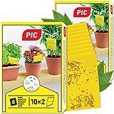 Trappole Appiccicose per piante