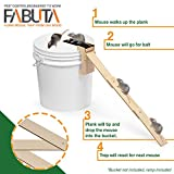 FABUTA Plank Mouse Trap from Oak Wood - RAMP INCLUDED - Walk The Plank Mouse Trap Auto Reset - Humane Bucket Rat Trap - Kill or Live Catch Mice & Other Pests & Rodents
