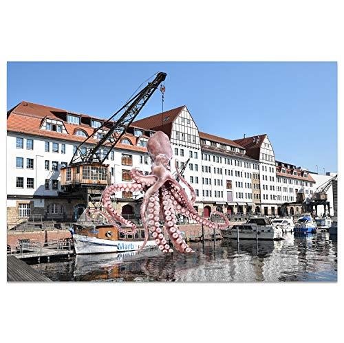 Ansichtkaarten +++ DIN A6 BERLIN motief: Krake I stadhoeken I Hoge kwaliteit kaarten I Leven & momenten grappig I Ansichtkaarten Postcrossing I Geschenk I Geschenkidee