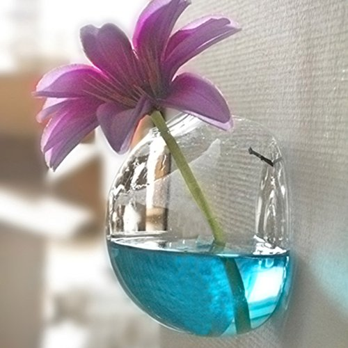 ガラスの花瓶、爪のないクリエイティブな透明な花の配置ガラスの吊り花瓶テラリウム水耕植物の花瓶の花のディーホームテーブルの装飾