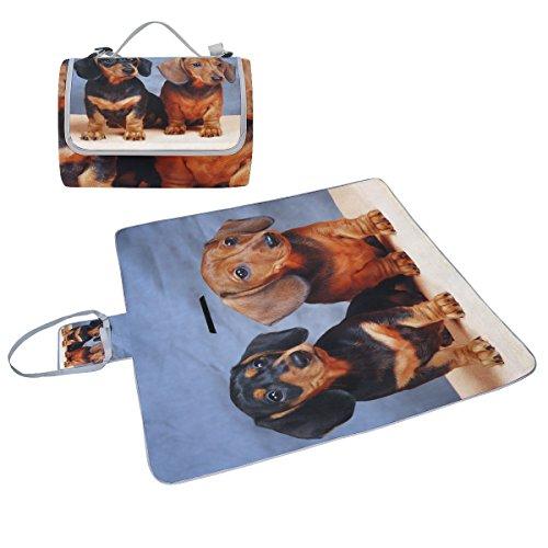 COOSUN Dackel Hund Picknick Decke Tote Handlich Matte Mehltau resistent und wasserfest Camping Matte für Picknicks, Strände, Wandern, Reisen, Rving und Ausflüge
