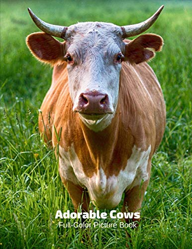 Adorable Cows Full-Color Picture Book: Cows Picture Book for Children, Seniors and Alzheimer's Patients- Aging Parents- Mammal Calf