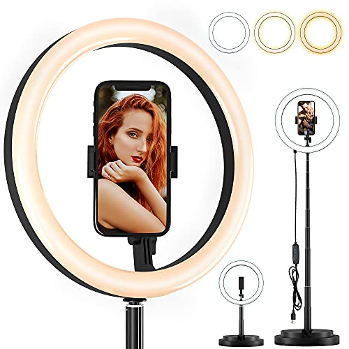 Selfie Ring Light with Phone Holder 11.4 inch, Integrated Folding Storage, Remote Control Panel Dimmable Brightness & Color Temperature, LED Fill Light for Makeup/Photography/YouTube Video/TIK Tok