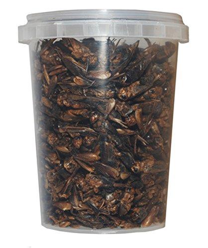 TropicShop 500 ml Grillen gefriergetrocknete/getrocknet | Reptilienfutter, Schildkrötenfutter, Futtertiere Igelfutter Vogelfutter