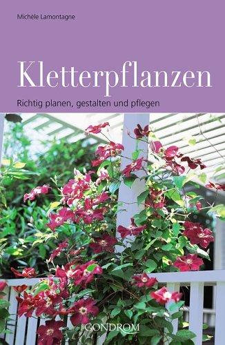 Kletterpflanzen: Richtig planen, gestalten und pflegen