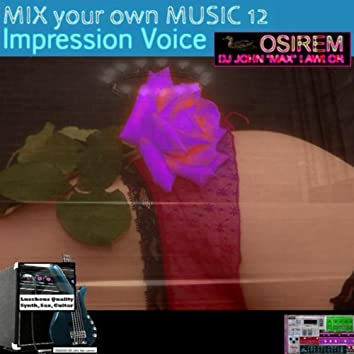 Mix Your Own Music 12 - Impression Voice