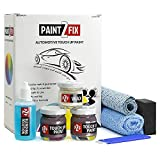 Touch Up Paint for Honda - YR642M Midnight Amethyst | Brownish Amethyst | Paint Scratch Repair Kit - Gold Pack
