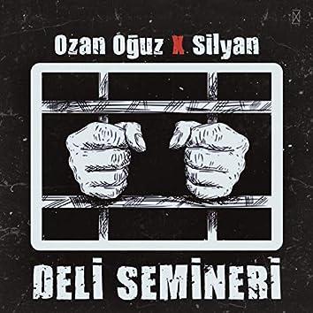 Deli Semineri (feat. Silyan)