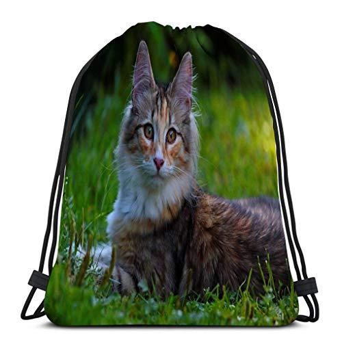 Lsjuee Yoga Bolsas con cordón de viaje para hombres y mujeres dulce gato del bosque noruego gatito tirado por el césped summerday gato del bosque noruego gatito summerday