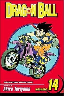Dragon Ball, Vol. 14: Heaven and Earth (Dragon Ball- Shonen Jump Graphic Novel)