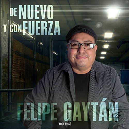 Felipe Gaytan
