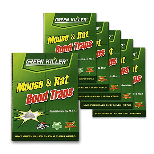 Qmadix Mice Traps Sticky Boards, Strongly Adhesive,Mouse Traps That Work Capturing Indoor and Outdoor Rat Cockroach Spider 6PACK