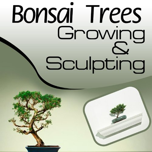 Bonsai Trees 101 - Growing and Sculpting