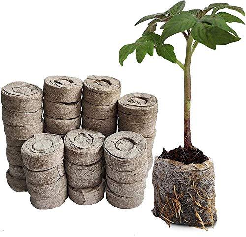 woejgo Kokos Quelltabletten mit Nährstoffen, Anzucht quelltabletten Bonsai anzuchterde für die Samenkeimung, Anzuchterde torffrei zur Pflanzen Kräuter Blumen und Gemüse. (20 Stück)