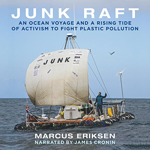 Junk Raft audiobook cover art