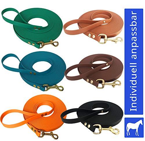 bio-leine Longe Führstrick 5 bis 10m aus Biothane - 16mm breit I Pferdelonge mit Handschlaufe I 20 Farben I Softlonge Leine Longierleine für Reitsport Pferd
