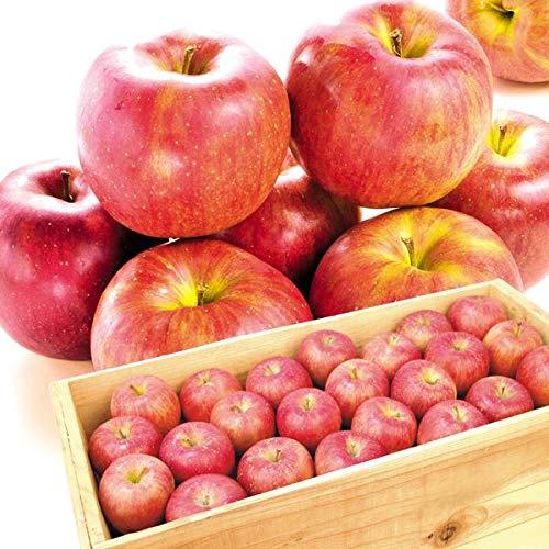 国華園 食品 青森産 大特価 シナノスイート 約20�s1箱 木箱 りんご