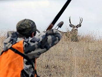 Best recurve hunting Reviews