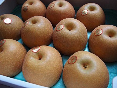 和梨 豊水 2L 10玉×3箱 栄養たっぷりの無袋栽培 山形県産 庄内の恵み屋