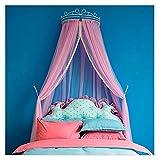 Red de ropa de cama, mosquitero estilo princesa de Palacio sólido de encaje puro para cama Mantle Bed marco de cama de hierro hueco (color espectáculo, tamaño: Queen)