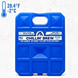 Long Lasting Ice Pack for Coolers, Camping, Fishing and More, X-Large...