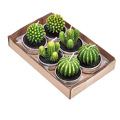 NANAOUS 6 confezioni di candele a forma di cactus per la festa della mamma, fatte a mano, delicate candele per la casa, per feste di compleanno, matrimoni