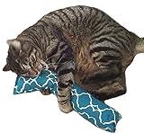 West Coast Pet Products 15' Catnip Kitty Kicker Toy with Refillable Catnip Pocket (Green)