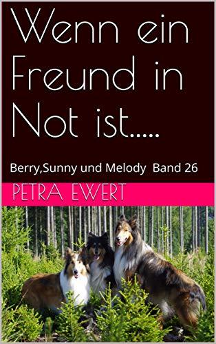 Wenn ein Freund in Not ist.....: Berry,Sunny und Melody Band 26 (Berry und Sunny) (German Edition)
