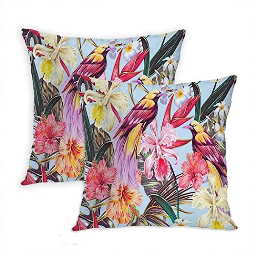 LINGF - Juego de 2 Fundas de Almohada con diseño de Animales, Flores exóticas Tropicales, Hojas de Palmera, Jungla, Hibisco, orquídea, pájaro, cojín, 20 x 20 Pulgadas
