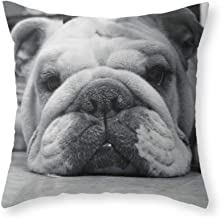 Personalised ENGLISH BULLDOG Pillow Case add Name or Message GREAT GIFT
