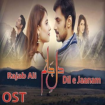 "Dil E Jaanam (From ""Dil E Jaanam"")"